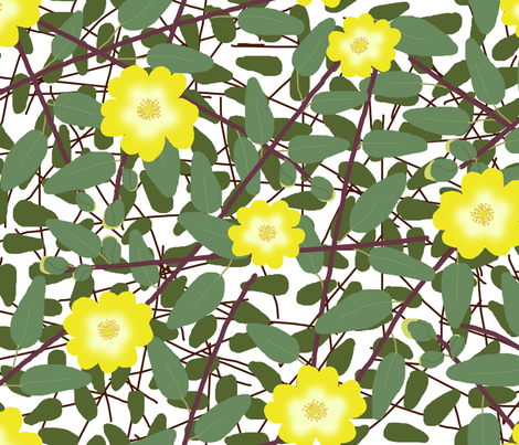 Buttercups on a bush (Hypericum Hidcote) - white fabric by victorialasher on Spoonflower - custom fabric
