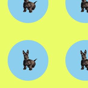 Dog_Polka_Dot