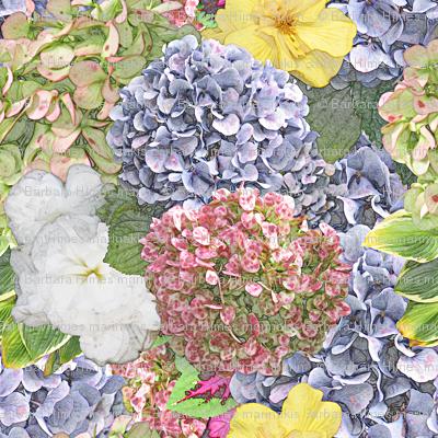 Launceston Flowers