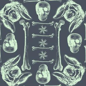 Bones,skulls and bats.