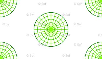 polar graph R6X