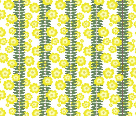 Rrbuttercup_bush_rigid_leaf_stripe_scattered_flowers_white_shop_preview