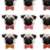 Rrrrpug-boys_shop_thumb