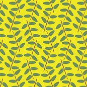 Rbuttercup_bush_zigzag_twigs_bright_yellow_shop_thumb