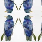 Rrrrrrrrrrrrrrrrrbird_with_blue_plumb_1_shop_thumb