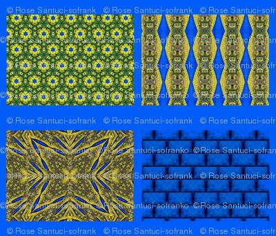 Peacock Pattern Coordinates