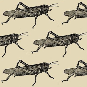 A Plague Of Giant Locusts