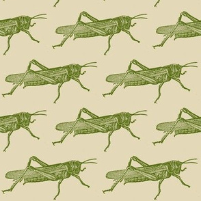 A Plague Of Giant Green Locusts