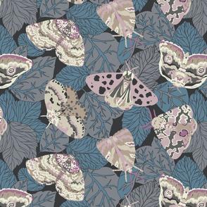 Leafy Moths