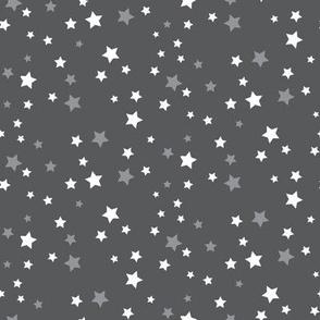 Stargazer (Gray)