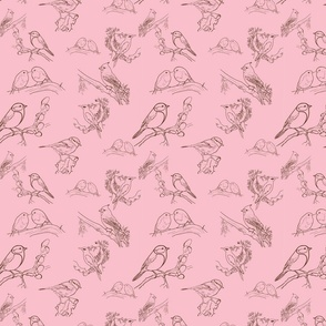 Birds toile (pink)