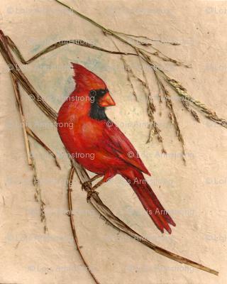 Cardinal fabric