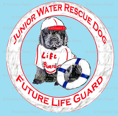 Life Guard Newfoundland Puppy