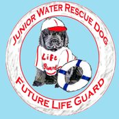 Rrrlife_guard_newfy2_shop_thumb