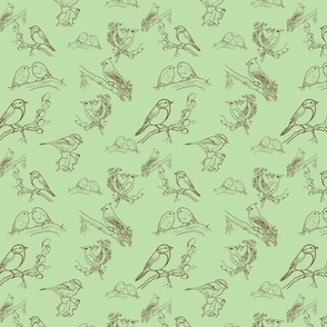 Bird Toile (Mint and brown)