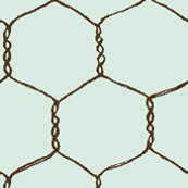 Rrrrrchicken_wire_cream_lt_blue_shop_thumb
