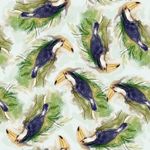 Toucan Tangle