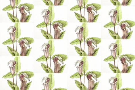 Woodland Flowers fabric by betweentheweeds on Spoonflower - custom fabric
