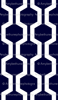 ABP navy lattice