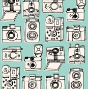 Rrrnew_cameras_pale_turquoise_shop_thumb