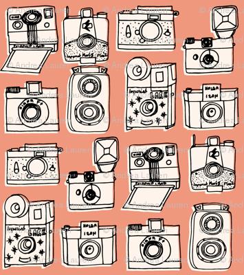 Vintage Cameras // blush peach rose coral kids nursery girls vintage shabby chic