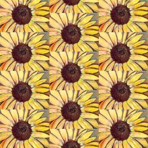 small sunflower pattern