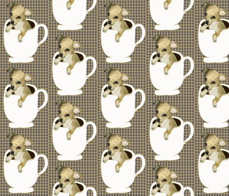 Rrrteacup_chihuahua_shop_preview