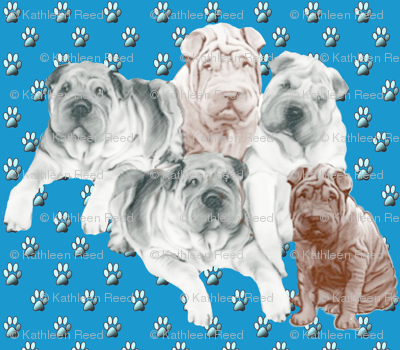 Shar Pei family Group