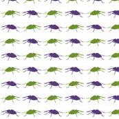 green_purple_weevil