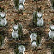 Rrsquirrel_7015_shop_thumb