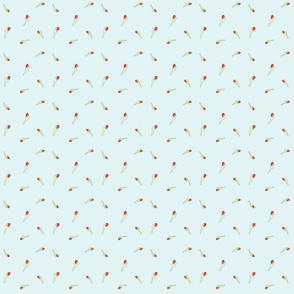 Nasturtium Buds - Fresh