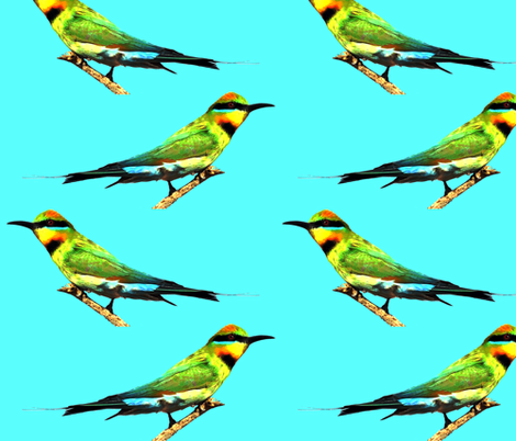 rainbow_bee_eaters fabric by mangomail on Spoonflower - custom fabric