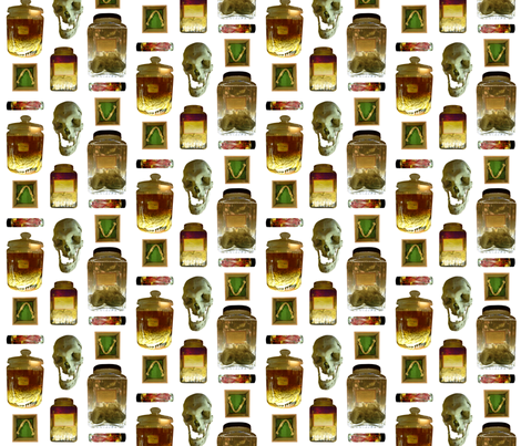 Things in Jars fabric by giantpeanut on Spoonflower - custom fabric