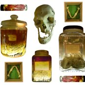 Rrrrthings_in_jars_2_shop_thumb