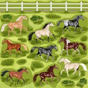 Rhorses_with_fence_decals_shop_thumb