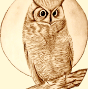 owl small
