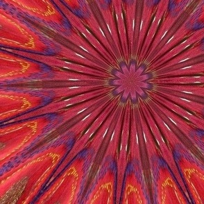Red embroidery starburst