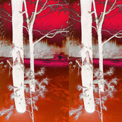Ghostly Pink Forest