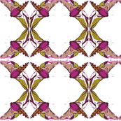 Moth Floral