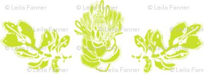 Protea and Leaf - Lime