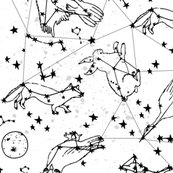 constellations // black and white kids designs nursery stars animals