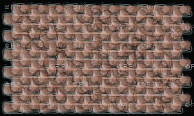 brick-itti