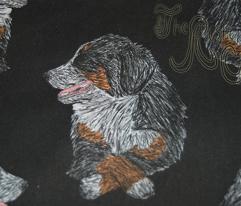 Proper Berners colored sketch - black