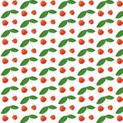 Rrcherries8_shop_thumb
