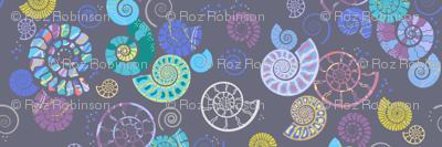 ammonites grey
