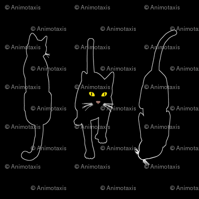 Black Cats 4, L