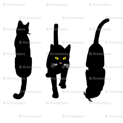 Black Cats 5, S