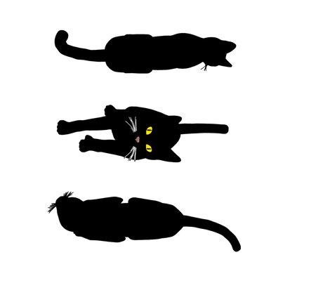 Rrr019_black_cats_5-b_shop_preview