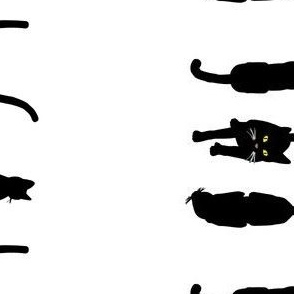 Black Cats 5, Border S