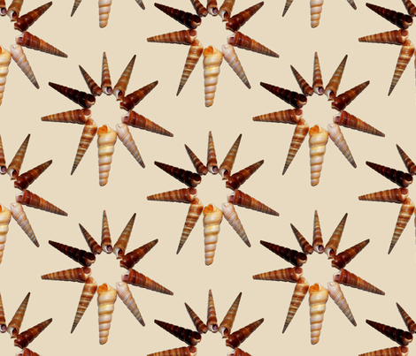 Star  Shells fabric by farrellart on Spoonflower - custom fabric